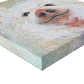 Lienzo Pintura mullida del cerdo