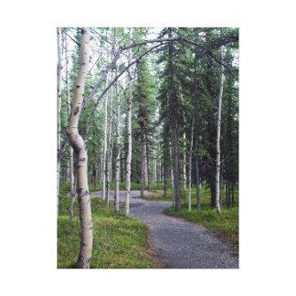 Lienzo Pista de senderismo alineada árbol hermoso Alaska