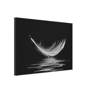 Lienzo pluma blanca que flota en el agua negra