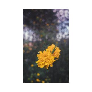 Lienzo Pompom en flor amarilla