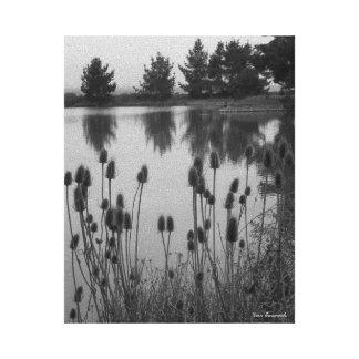 Lienzo Regiones pantanosas de Arcata, CA (en blanco y