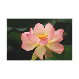 Lienzo Relajación verde rosada floral de Lotus del jardín