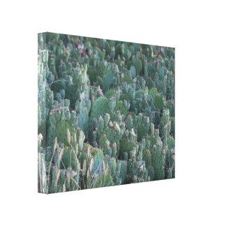 Lienzo Remiendo del cactus