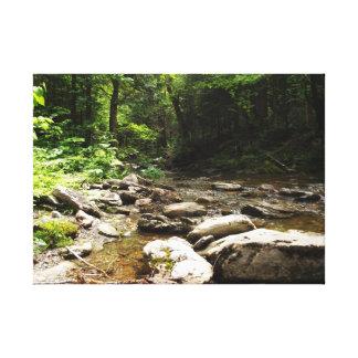 Lienzo Río en la madera