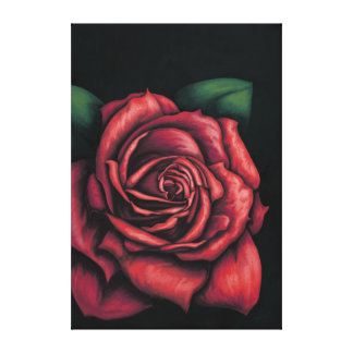 Lienzo Rosa roja sobre fondo negro