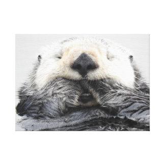 Lienzo Sea Otter Sleeping