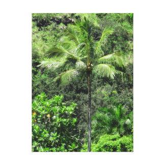 Lienzo Selva tropical hawaiana