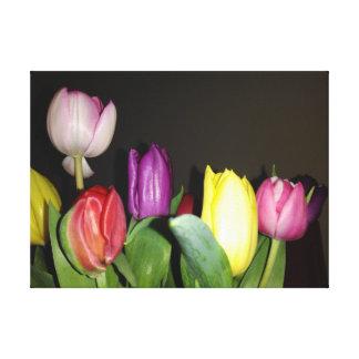 Lienzo Todavía de los tulipanes vida colorida