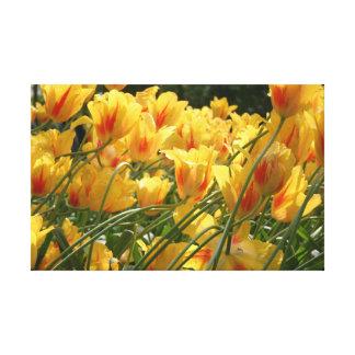 Lienzo Tulipanes amarillos