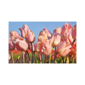 Lienzo Tulipanes rosados de la primavera