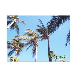 Lienzo Viento en palmeras