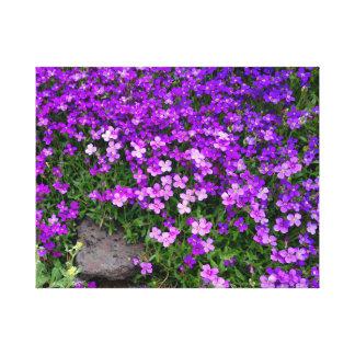 Lienzo Wildflowers púrpuras minúsculos