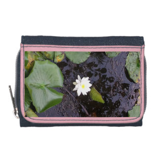 lilly cartera de la charca