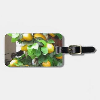 Limones Etiqueta Para Maletas