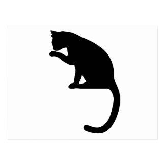 Limpieza del gato postal