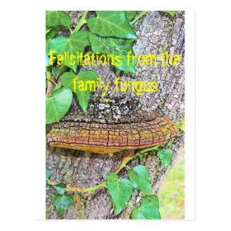 Línea del hongo de la familia postal