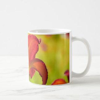 Lirio colorido taza de café