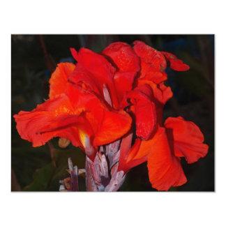 Lirio de Canna rojo brillante Invitación 10,8 X 13,9 Cm