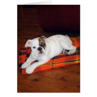Lirio el perrito inglés del dogo tarjeta de felicitación