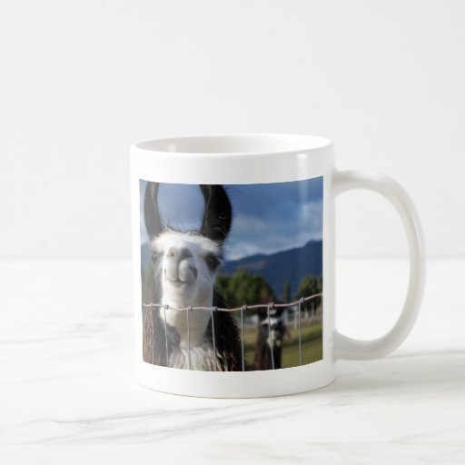 Llama sonriente divertida en Oregon meridional Taza