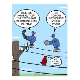 Llamadas del pájaro postal