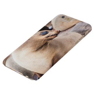Llamo por teléfono al lobo marino del cabo de la funda barely there iPhone 6 plus