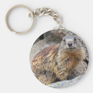 Llavero alpino de la marmota