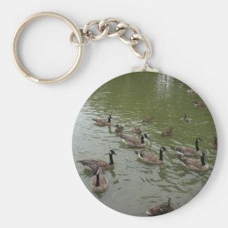 Llavero canadiense de los gansos y de los patos