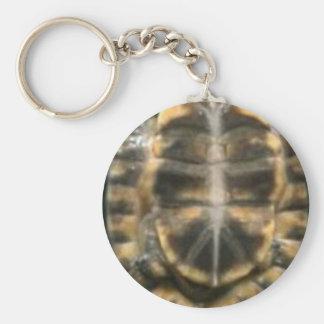 Llavero cáscara de la tortuga