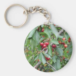 Llavero Cerezas rojas en árbol en huerta de cereza