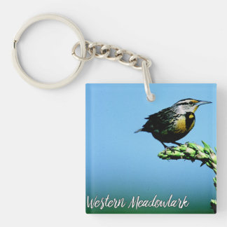 Llavero Cielo azul Meadowlark del pájaro cantante