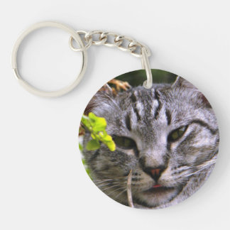 Llavero de plata de la cara del gato de Tabby