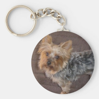 Llavero de Yorkshire Terrier