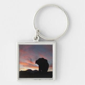 Llavero del elefante de la puesta del sol
