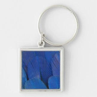Llavero Diseño azul de la pluma del Macaw del jacinto