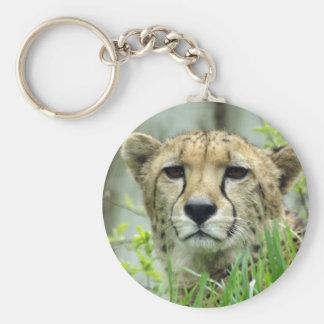 Llavero encantador del guepardo