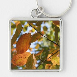 Llavero Fotografía de la naturaleza del cielo de las hojas
