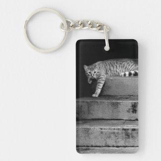 Llavero Gato perdido en las escaleras