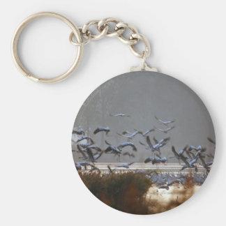 Llavero Grúas del vuelo en un lago