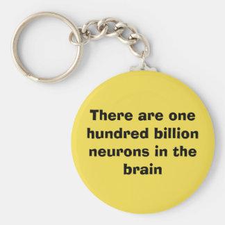 Llavero Hay cientos mil millones neuronas en el cerebro