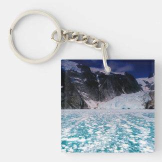 Llavero hermoso del glaciar de Alaska