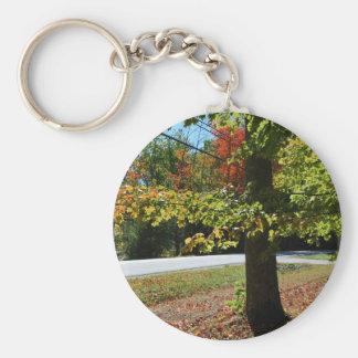 Llavero Hojas de otoño en Maine
