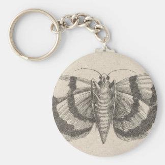 Llavero Insecto de los lepidópteros de la entomología de