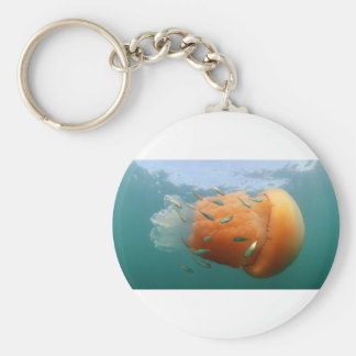 Llavero La medusa del barril nada con la caballa