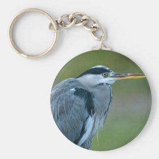 Llavero llaveros, hermosos, imágenes, pájaros, animales