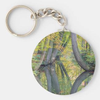 Llavero Los troncos de árbol de la caída con la reflexión