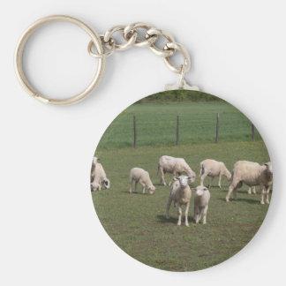Llavero Manada de ovejas