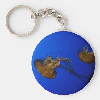 Llavero pacífico de las medusas de la ortiga del
