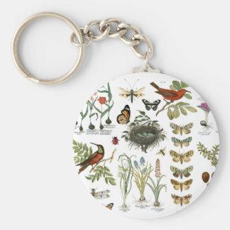 Llavero pájaros botánicos franceses y flores del vintage