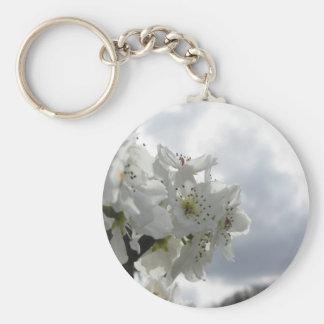 Llavero Peral floreciente contra el cielo nublado